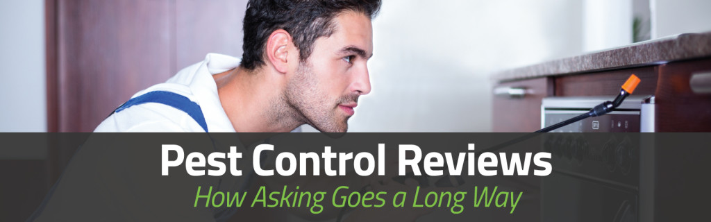 Pest Control Reviews-How Asking Goes a Long Way